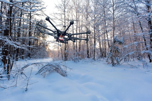 A drone flying through a forrest