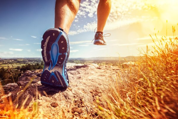 Which running shoe fits best for your needs?