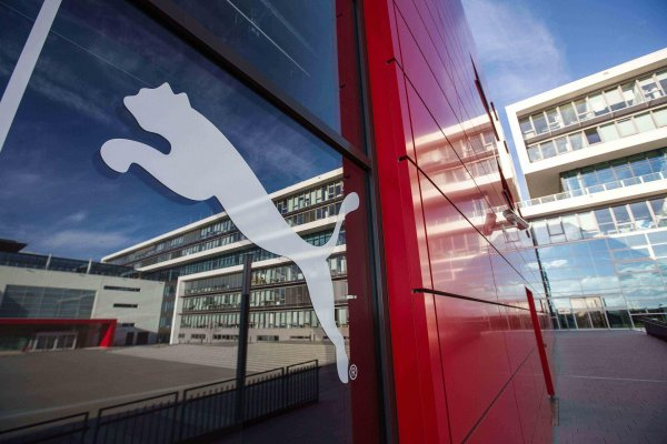 Rise in Revenues: Puma Presents Promising Business Figures