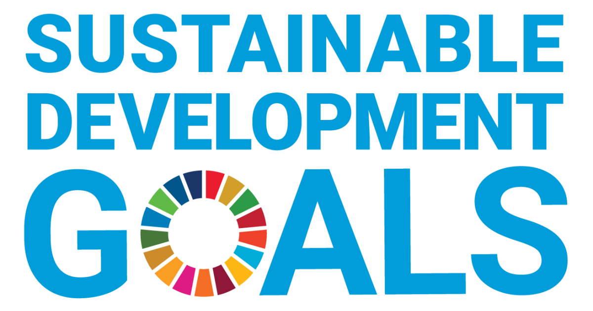 SDG - Agenda 2030: The Most Important Issues