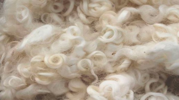 Because of their outstanding properties, people have been using wool for centuries.