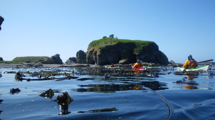 Kayak tour in front of Tatoosh Island in the State of Washington.
