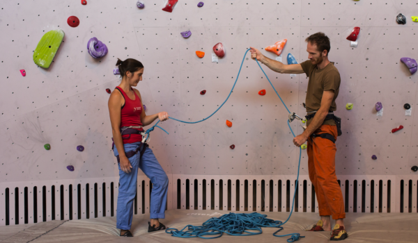 Climbers in the gym