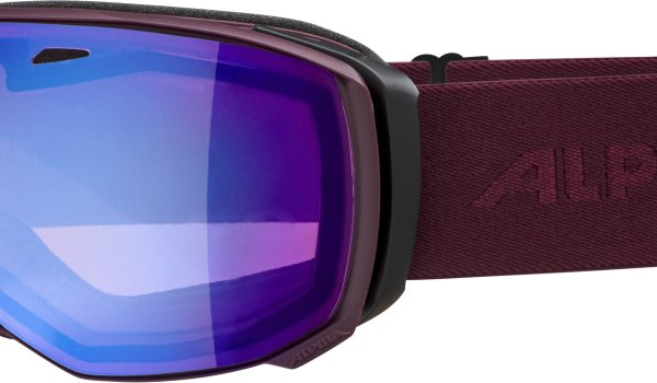 The Alpina Estetica is available with QHM technology. The freeride goggle offers a large field of vision.
