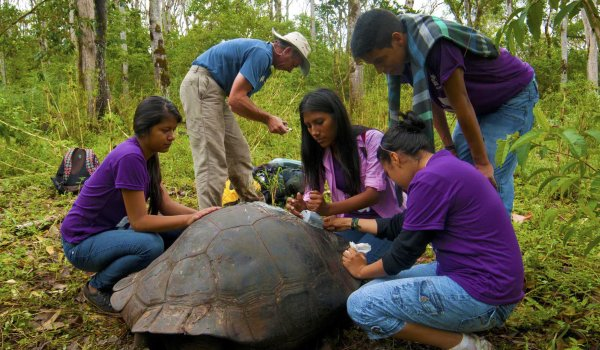 Engaging Local Youth in Conserving the Galapagos Tortoise