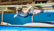 In the Watersports Villagage, visitors are offered acrobatic top performances.