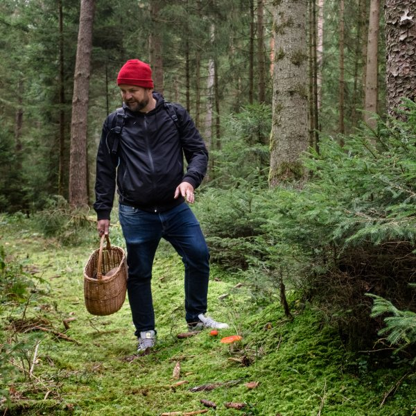 Food expert Sven Christ collecting mushrooms
