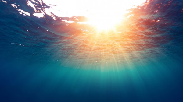 Underwater shot: Sunbeams shining through the water