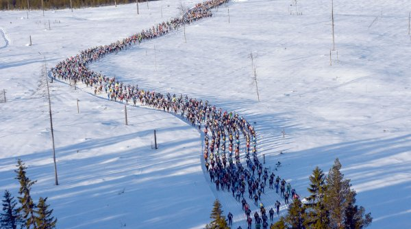 The Vasaloppet through the Swedish forests is one of the highlights of cross-country skiing.