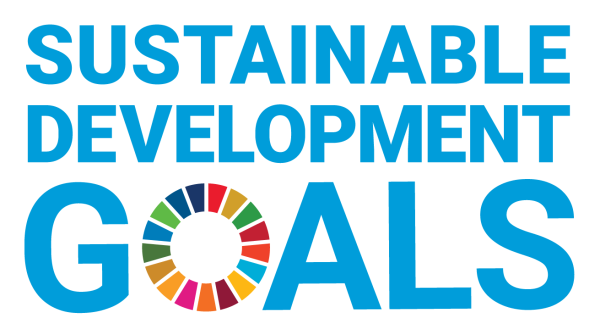 Insgesamt 17 Sustainable Development Goals hat die UN formuliert.