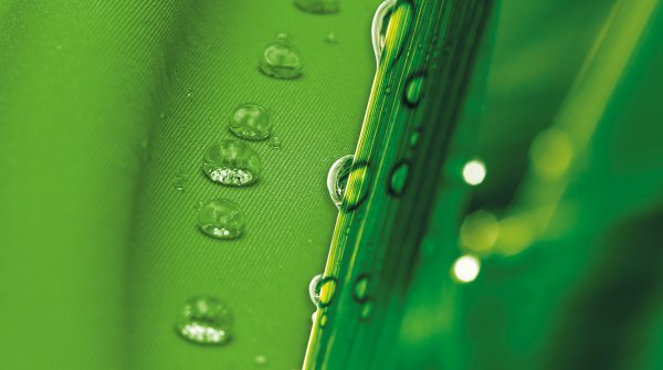 Green water repellent fabric and plants