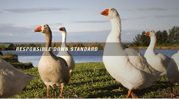 With the initiation of the Responsible Down Standard, The North Face began doing pioneering work in the field of animal protection.