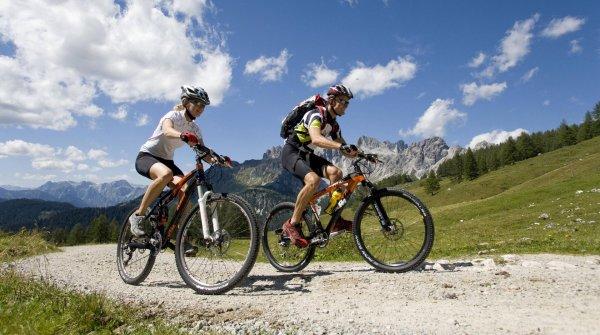 Welches Mountainbike passt zu Ihnen? Hier gibt es die Antwort.